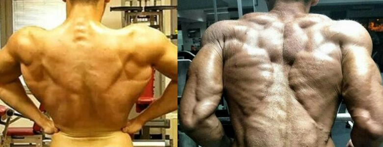 Best SARMs: Stacks For Chopping, Bulking & Recap