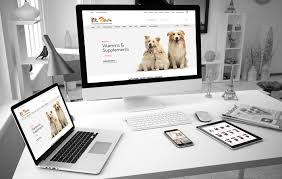 Ecommerce Web Design Packages For Small Businesses in Chelmsford